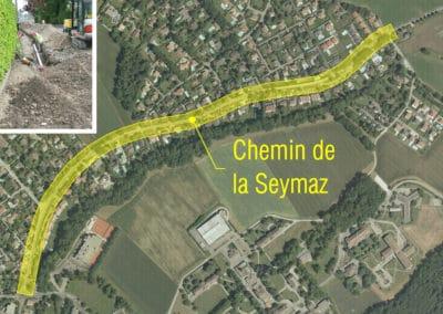Chemin de la Seymaz à Vandœuvres